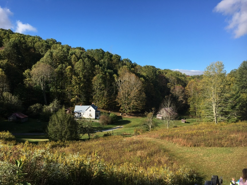 Campground Review: Roan Mountain StatePark